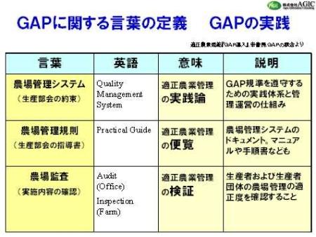 日本と欧州のGAP比較とGAPの意味